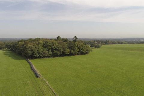 Farm for sale - Haslemere Road, Brook, Surrey, GU8