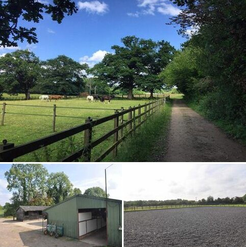 Equestrian property to rent - Tulls Lane, Bordon