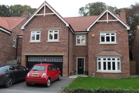 5 bedroom detached house to rent - Cleminson Gardens, Cottingham, Hull