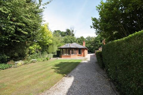 3 bedroom detached bungalow for sale - Little Baddow, Chelmsford