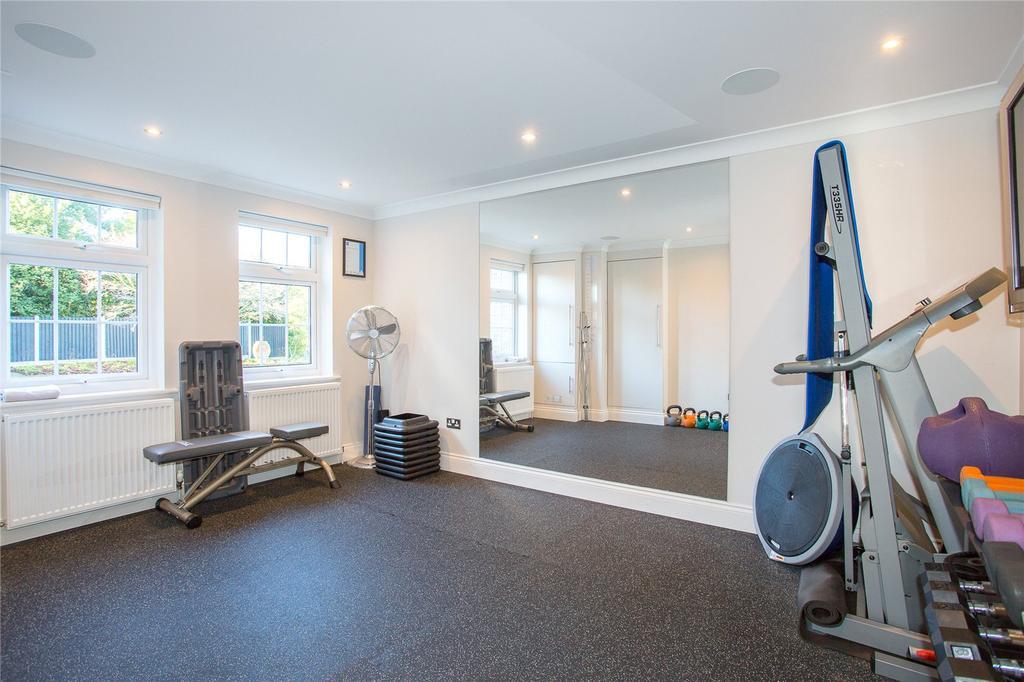 Gym/Bedroom 5