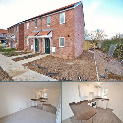 2 bedroom semi-detached house to rent - Blandford St Mary