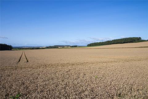 Farm for sale - Land At Criggie Farm, St. Cyrus, Montrose, Angus, DD10