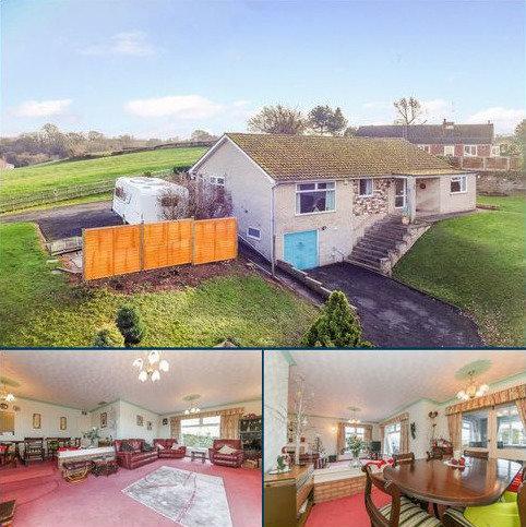 3 bedroom detached bungalow for sale - Terrills Lane, Tenbury Wells