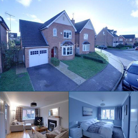 3 bedroom detached house for sale - Daffodil close