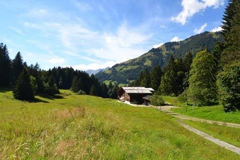 7 bedroom farm house  - Unterbort, Gstaad