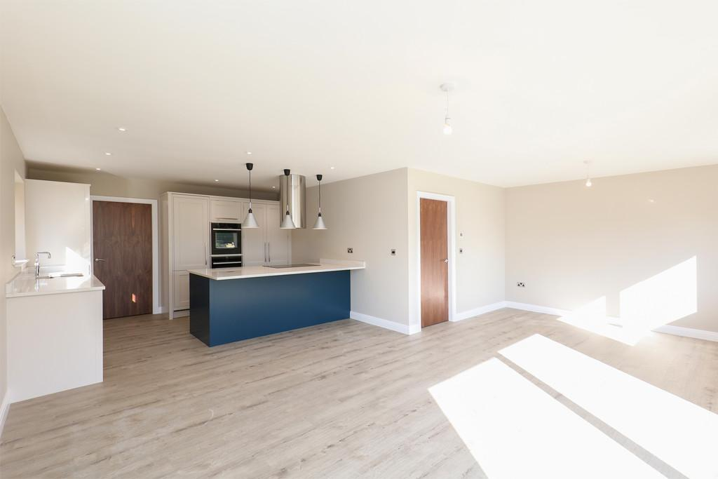 Kitchen / Living Space