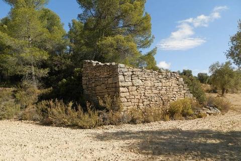 Land for sale - Poligono 8, Arens De Lledo. Spain