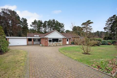 4 bedroom detached bungalow for sale - Grayshott, Hindhead, Hampshire