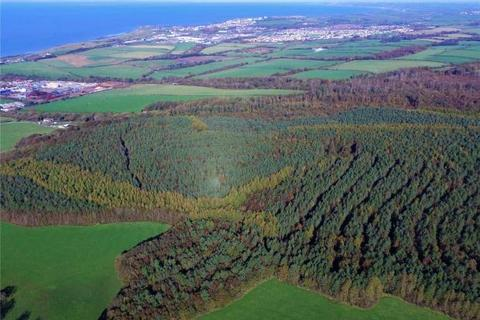 Land for sale - Flimby Great Wood, By Flimby, Cumbria
