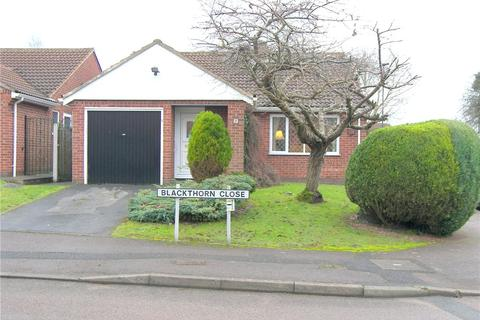 2 bedroom detached bungalow to rent - Blackthorn Close, Oakwood