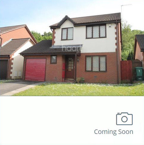 3 bedroom detached house to rent - Blossom Close