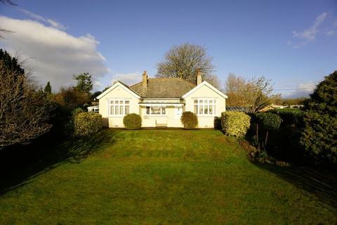 3 bedroom detached bungalow for sale - St. Stephens Hill, Launceston