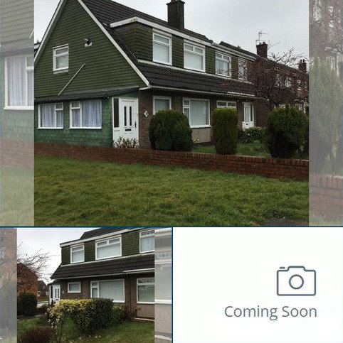 3 bedroom semi-detached house to rent - Fulmar Drive, Blyth