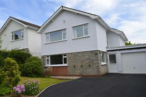 4 bedroom detached house for sale - Rhyd Yr Helyg, Derwen Fawr, Swansea