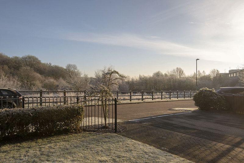 Frosty Outlook