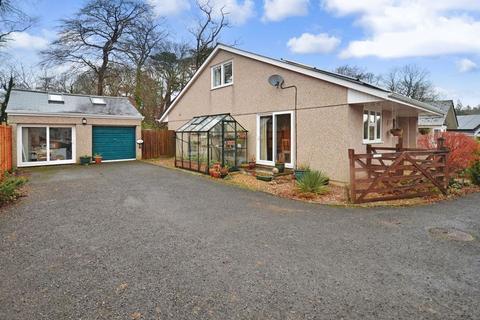 4 bedroom detached bungalow for sale - Whiteley Avenue, Totnes