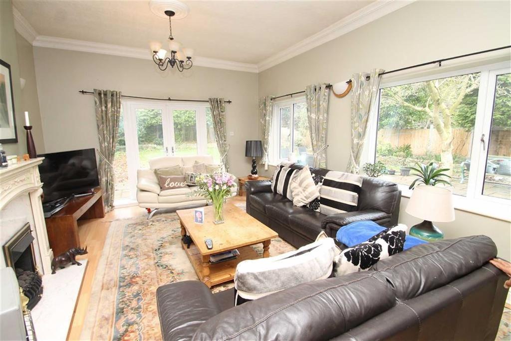 Rear Reception/Living Room