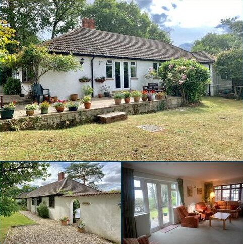 4 bedroom bungalow for sale - GREEN BOTTOM, COLEHILL, BH21 2LW