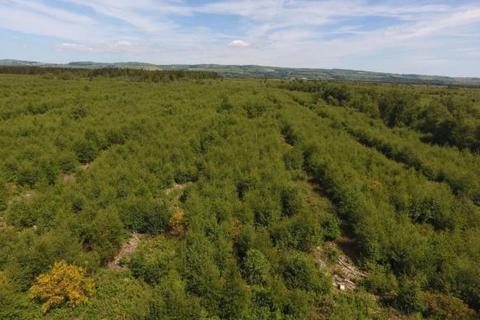 Property for sale - Craigs Moss, Dumfries, DG1