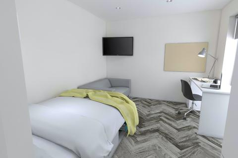 Studio to rent - Premium Studio Plus at Oval Living, New Walk