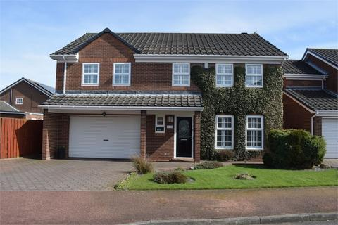 5 bedroom detached house for sale - Abbey Drive, Newcastle upon Tyne, Tyne and Wear