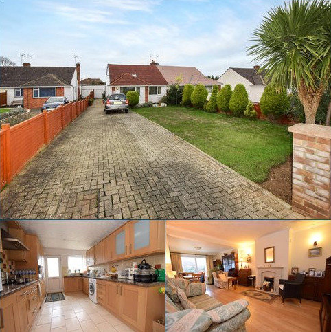 2 bedroom semi-detached bungalow for sale - Fremantle Road, Taunton, Somerset, TA1