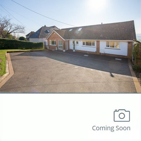 4 bedroom detached bungalow for sale - Bath Road, Ashcott