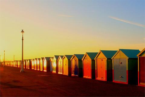 Beach hut for sale - Beach Hut 335a, West Hove