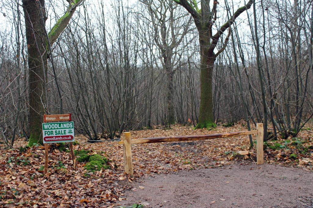 The ride stop entrance to Ridge Wood