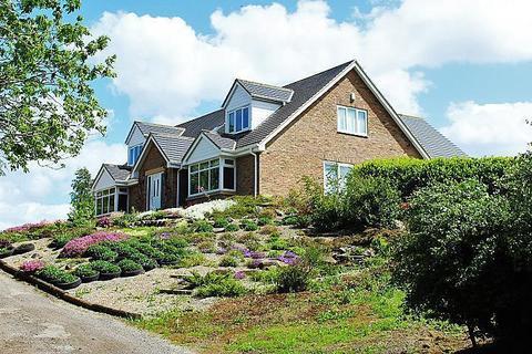 4 bedroom detached house for sale - Calf Fallow Lane, Norton, TS20