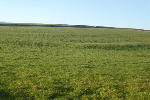 Farm land for sale - Gelli Aur, Ffair Fach, Llandeilo