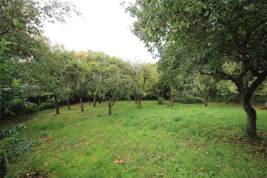 Lot 5 Julias Orchard
