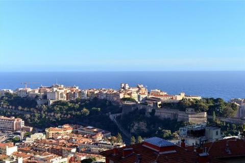 4 bedroom apartment  - Jardin Exotique, Monaco