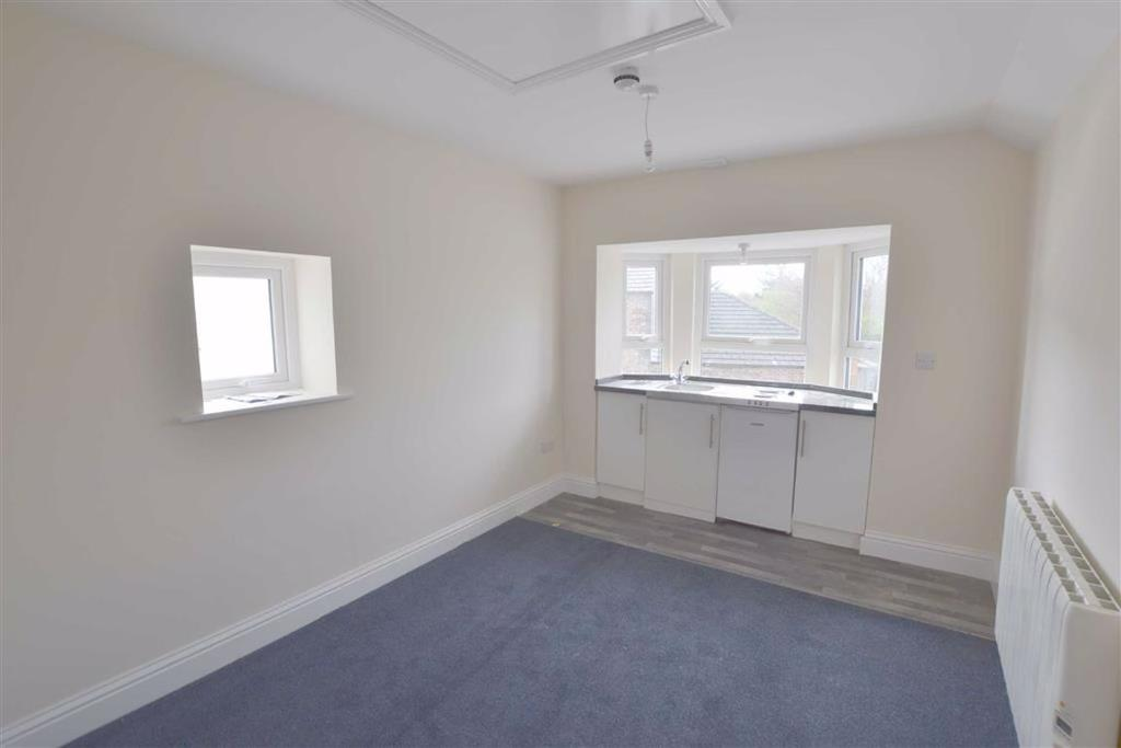 Bed/Sitting Room/Kitchen