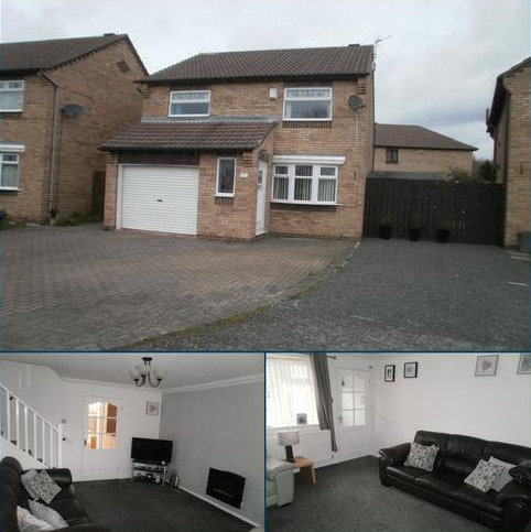 3 bedroom detached house for sale - Springwell Close, Billingham TS23