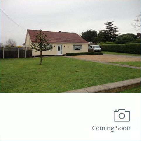 5 bedroom detached bungalow to rent - wilton road, feltwell IP26