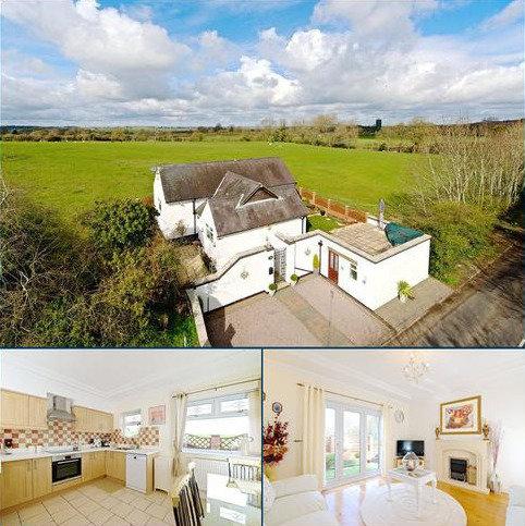 3 bedroom detached bungalow to rent - London Road, Bozeat, Wellingborough, Northamptonshire