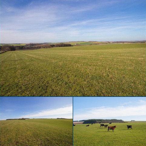Farm for sale - Land Near Turriff, Land At Greenbrae Farm, Turriff, Aberdeenshire, AB53
