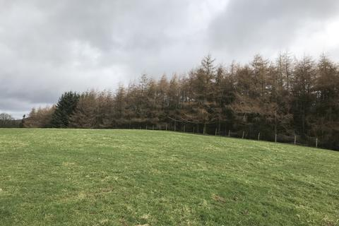 Land for sale - Lot 3 - Woodland at Scale Houses, Renwick, Cumbria CA10 1JY