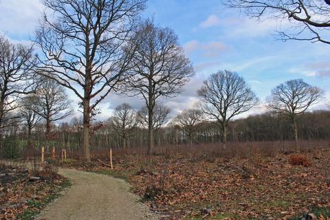 Land for sale - WOODLAND, Stanley Wood, Langley, Kent, ME17