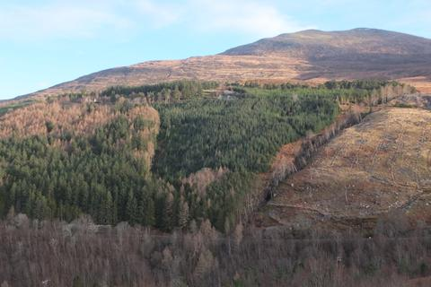 Land for sale - Braemore Wood, Lael, Wester Ross IV23