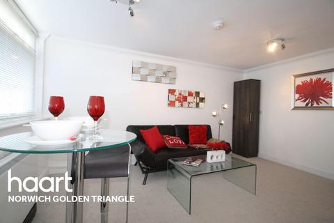 1 bedroom flat for sale - Earlham Road, Golden Triangle, Norwich