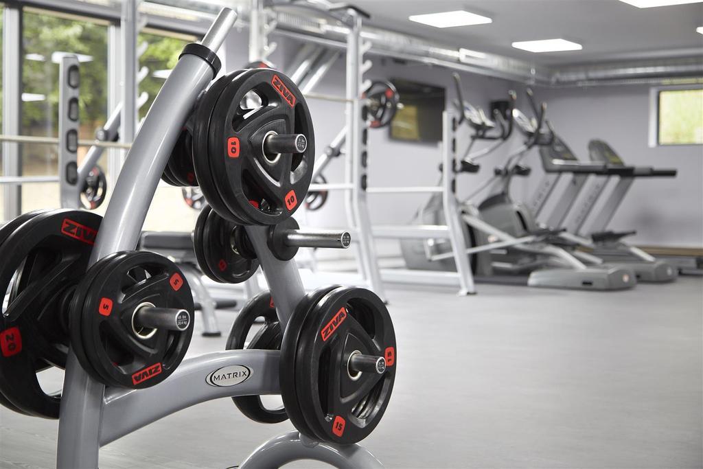 ?ICONINC Cyan Studios Gym 2 RT.jpg