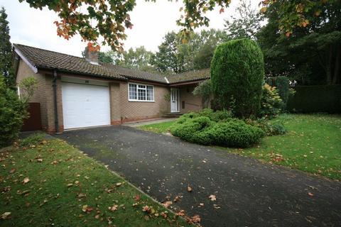 3 bedroom bungalow to rent - Westsyde, Darras Hall, Ponteland