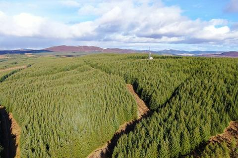 Land for sale - Pitcastle and Pylon Brae Forests, Nr Pitlochry, Perthshire PH16