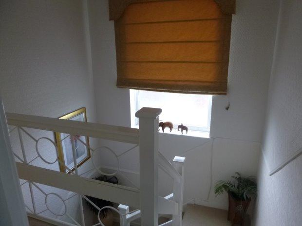 Stairs to first floor accommodation