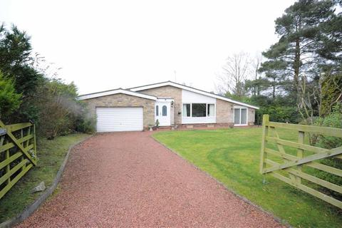 3 bedroom detached house for sale - Kings Drive, Hopton