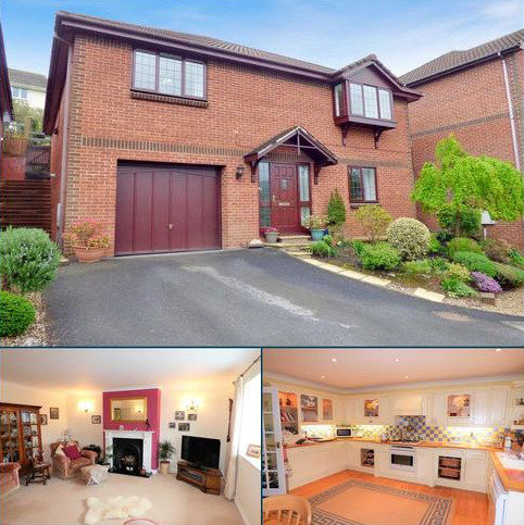4 bedroom detached house for sale - West View Close, East Ogwell