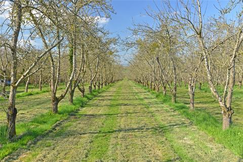 Land for sale - Four Winds Cider Farm, Lambrook, South Petherton, Somerset, TA13